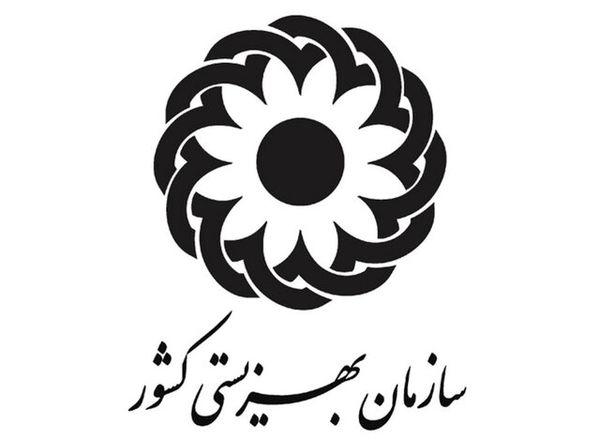 بازرس ویژه سازمان بهزیستی برای اجرای دستور رئیس جمهور منصوب شد