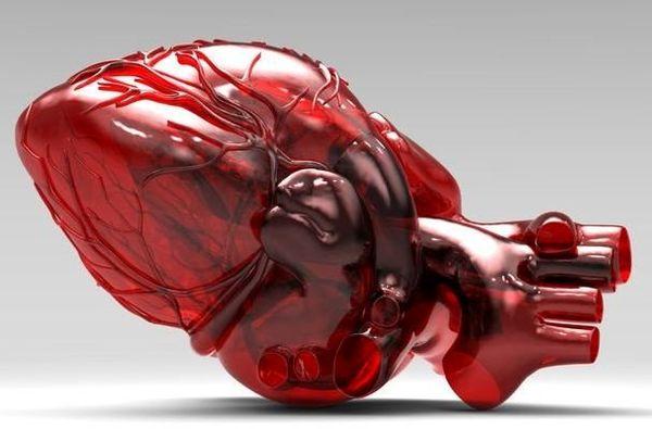 استفاده از پلاکت اصلاح شده بهعنوان نانوحامل سلول بنیادی قلب