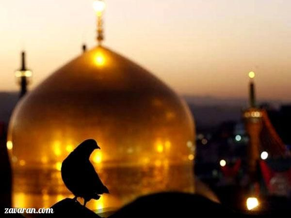 عکس پروفایل مذهبی؛ بارگاه امن رضوی/ ولادت امام رضا
