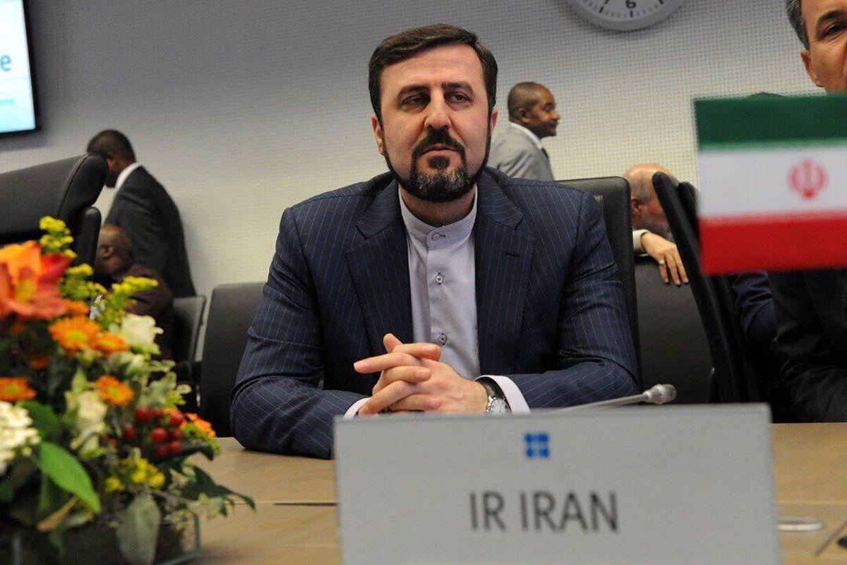 اظهارات مهم عضو هیئت مذاکرهکننده ایران در وین درباره لغو تحریمها