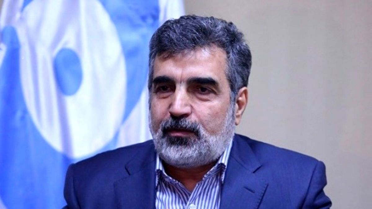 سخنگوی سازمان انرژی اتمی دچارحادثه شد