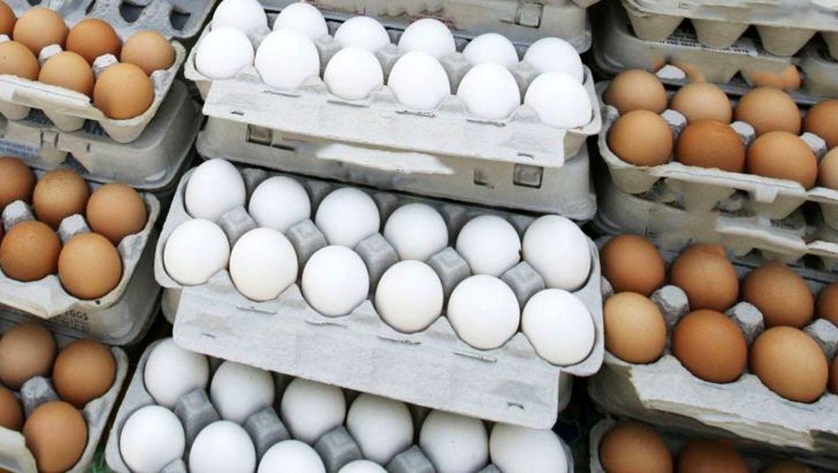 از کجا تخم مرغ ۴۳ هزار تومانی بخریم؟