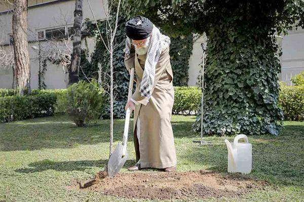 عکس/ کاشت دو نهال میوه توسط حضرت آیتالله خامنهای در روز درختکاری