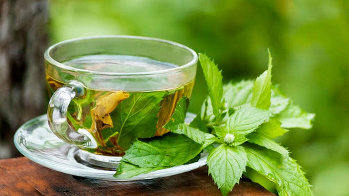۱۰ مزیت سلامتی چای سبز